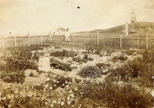 Sable Island Garden